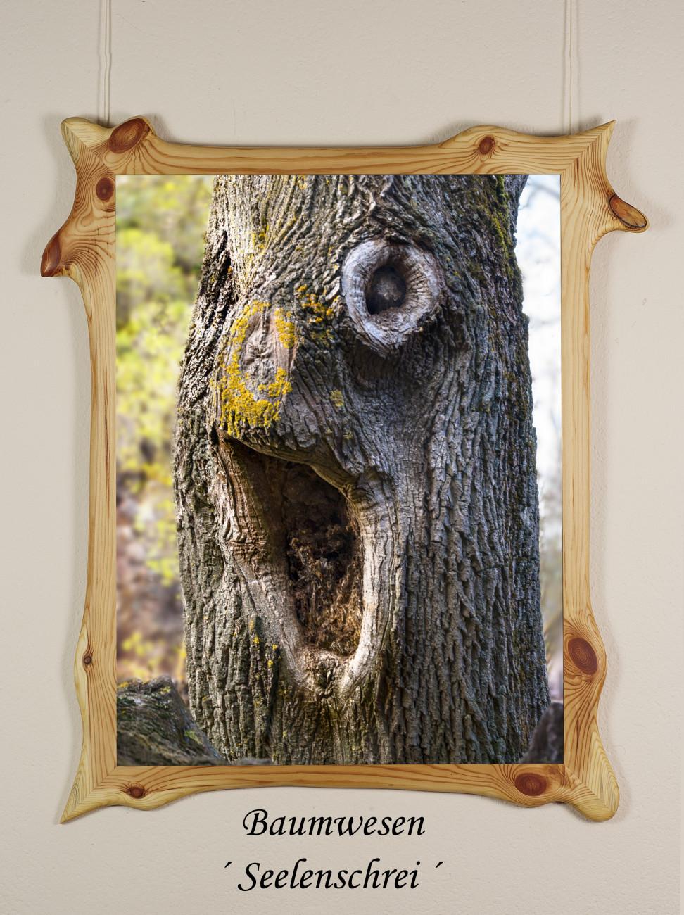 Galerie Winterberg Achim Schnorrenberger, Wesenheiten aus dem Wald in lebendigen Wildholzrahmen Baumwesen im Holzrahmen ,Seelenschrei´