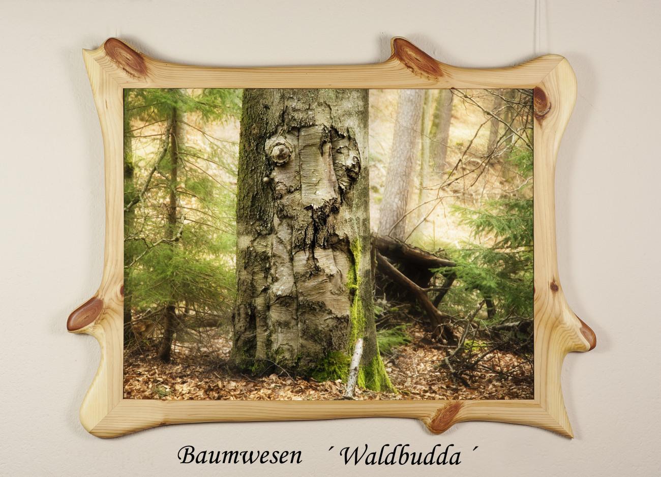 Galerie Winterberg Achim Schnorrenberger, Wesenheiten aus dem Wald in lebendigen Wildholzrahmen Achim Schnorrenberger